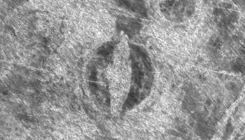 The Gjellestad ship as it appeared on the ground-penetrating radar (GPR) scan in 2018.